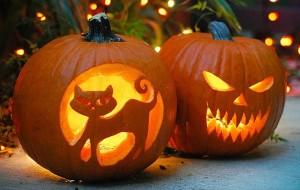 Ideas para usar calabazas en halloween